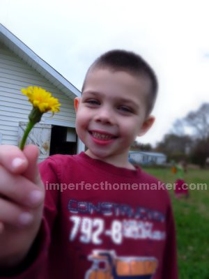 Inspiration archives page 8 of 9 imperfect homemaker yesterday he gave me this flower and of course i thanked him profusely i then tucked it in my hair mightylinksfo
