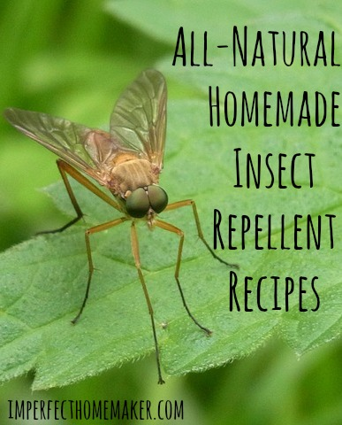 foto de Homemade Insect Repellent Recipes Imperfect Homemaker