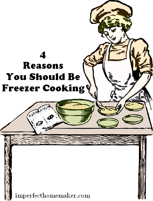 reasons for freezer cooking