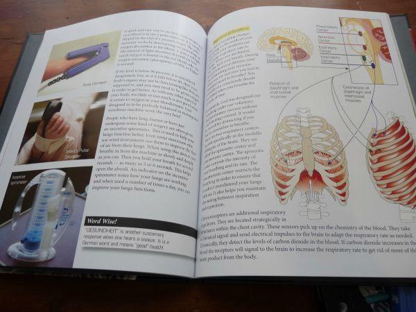Elementary Anatomy Homeschool Curriculum Review
