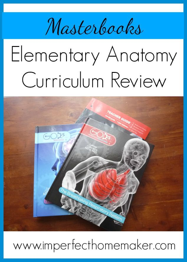 Elementary Anatomy Homeschool Curriculum Review | Imperfect Homemaker