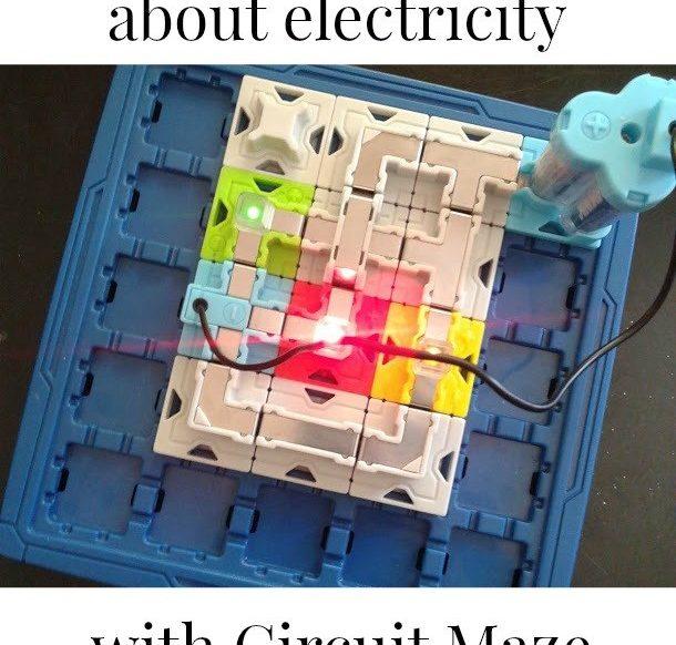 Circuit Maze review